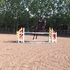 Lovely event/ showjump mare by VDL Douglas