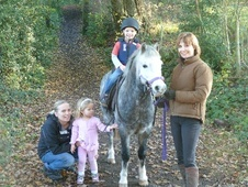 All Rounder horse - 8 yrs 12.2 hh Grey - Surrey