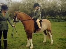 Lead Rein & First Ridden horse - 6 yrs 11.2 hh Chestnut Roan - La...