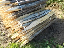 Chestnut Fencing Supplies - West Sussex