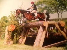 Eventers horse - 4 yrs 4 mths 16.0 hh Bay - Northumberland