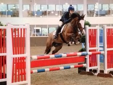 14. 2hh Welsh Section D