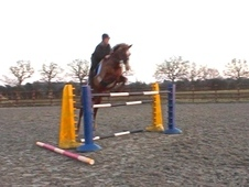 Show jumping school master!