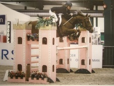 Show Jumpers horse - 8 yrs 14.2 hh Chestnut - West Yorkshire