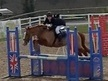 All Rounder horse - 14 yrs 14.1 hh Chestnut - South Glamorgan