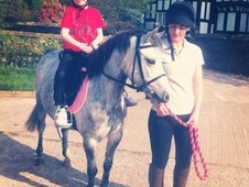 Lead Rein & First Ridden horse - 5 yrs 11.0 hh Dapple Grey - Ches...