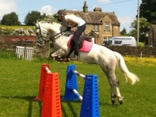 Show Jumpers horse - 11 yrs 14.2 hh Dapple Grey - West Yorkshire