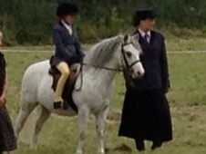 Lead Rein & First Ridden horse - 9 yrs 12.0 hh Grey - Derbyshire