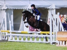 super competition proven safe pony