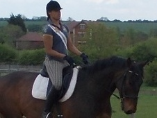 All Rounder horse - 11 yrs 16.3 hh Bay - Bedfordshire