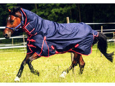 Norton 600d Lightweight Combo Turnout Rug - £49. 99
