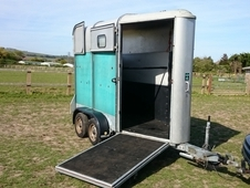 FOR SALE - Ifor Williams HB401 Single Horse Trailer