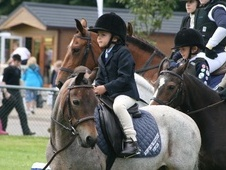 Lead Rein & First Ridden horse - 14 yrs 11.2 hh Strawberry Roan -...