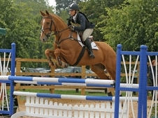 grassroots eventer/pc eventer
