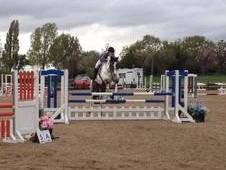 148cm 6 year old jumping pony!