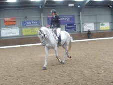 All Rounder horse - 8 yrs 16.1 hh Fleabitten Grey - Nottinghamshire