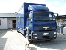 2004 Man 10 Horse Lorry For Sale
