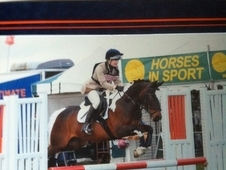 Fantastic Fun Competition Pony For Sale