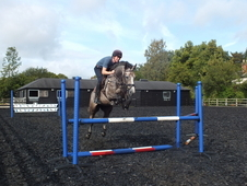 Show Jumper Or Eventer