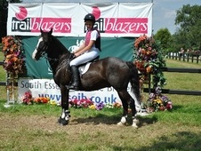 All Rounder horse - 14 yrs 13.2 hh Dark Brown - Nottinghamshire