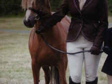 Fabulous Lead Rein Pony