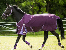 Equi-theme Tyrex 600d Double Gusset 200g Turnout Rug - £61. 99 +...