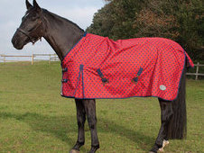 Rhinegold Spot Torrent Lightweight Turnout Rug - £32. 99