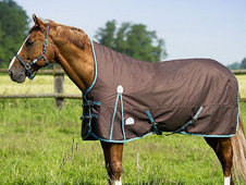 Equi-theme Tyrex 1200d High Neck Lightweight Turnout Rug - £63. ...
