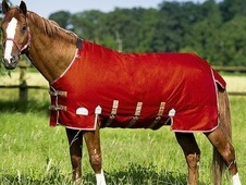 Equi-theme Tyrex 600d Belly Belt Lightweight Turnout Rug - £45. 99