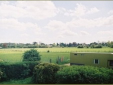 Cranbourne Farm Livery and Training Yard - Kent