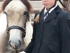 Dun And White Cob X