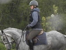 All Rounder horse - 4 yrs 15.2 hh Grey - Cheshire
