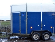 Blue Ifor Williams 505 horse trailer