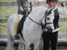 Lead Rein & First Ridden horse - 12 yrs 11 mths 11.2 hh Grey - Ch...