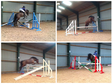 Sold**14hh 4yo Welsh X Mare - Pc Allrounder