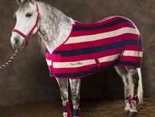Equi-Theme Stripe Polar Fleece Rug - Oxfordshire