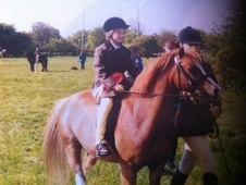 Lead Rein & First Ridden horse - 12 yrs 8 mths 11.2 hh Chestnut -...