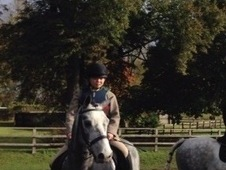 Stunning pc/rc, allrounder, hunting, family pony