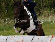 12. 2 Coloured Mare, Hunting/Pony Club