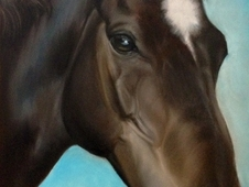 Pastel Pet Artist - Horses, Dogs & Cats