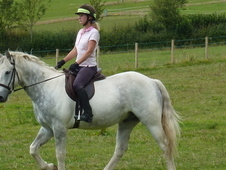Lovely Blue And White Cob
