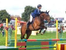 Outstanding 4yr Old For Sale!