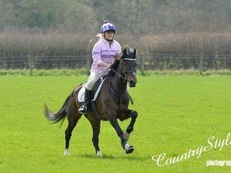 Sold .......Allrounder, beautiful 14.2 mare