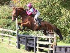 Super Eventer / Allrounder
