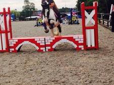 Perfect Allrounder Rc Fun Horse