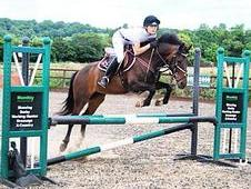 138cm/13. 2hh All Rounder, 10yrs, Mare