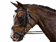 Collegiate Grackle Bridle. Sty - UK