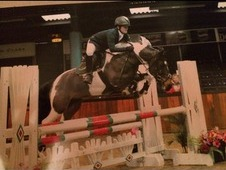 **REDUCED** Super fun 15. 1hh all rounder