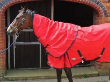 Lightweight 1200d Turnout Rug - Leicester
