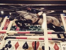 smart jumping pony